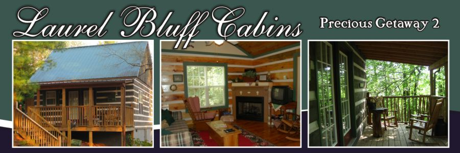 Cabin rental fancy gap va