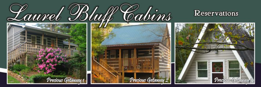 Reserve a cabin at Laurel Bluff Cabins Fancy Gap VA near the Blue Ridge Parkway