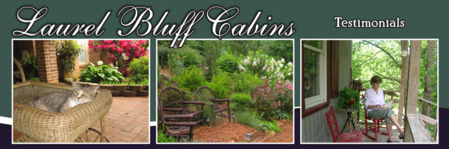Testimonials about Laurel Bluff Cabins near Fancy Gap, Virginia