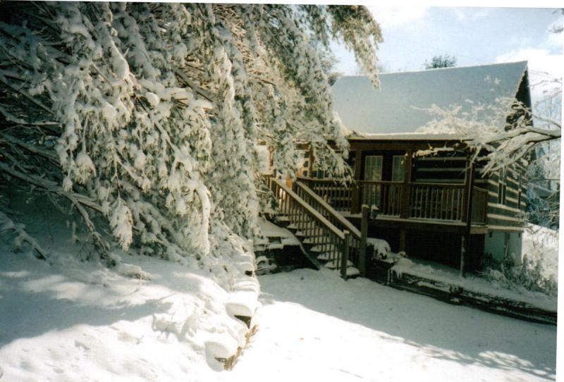 winter2_800x542